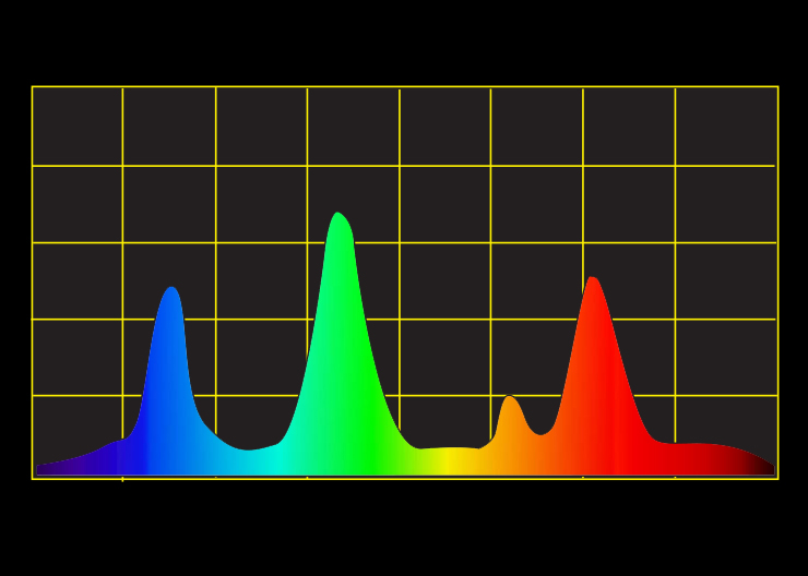 Typical Phosphor spectral curve